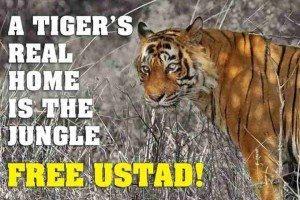 Poster with caption - A tigers real home is the jungle. Free Ustad""